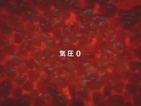 キューピー|アヲハタ55ジャム