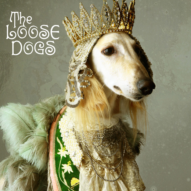 THE LOOSE DOGS|夜になれば 〜 Life Size